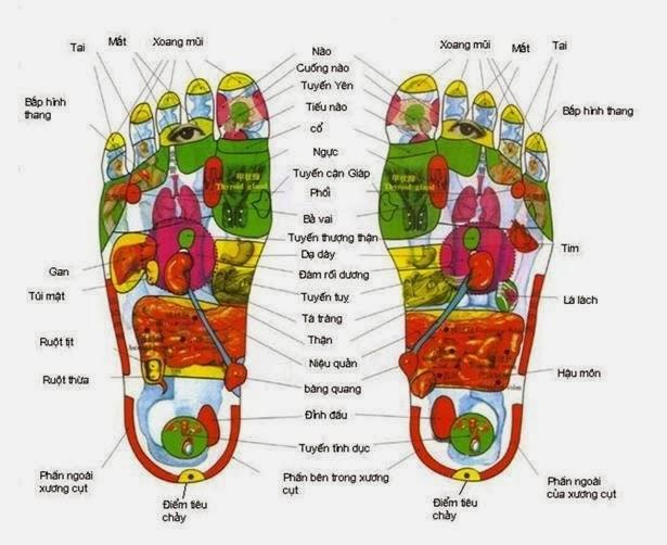 Diện chẩn lòng bàn chân