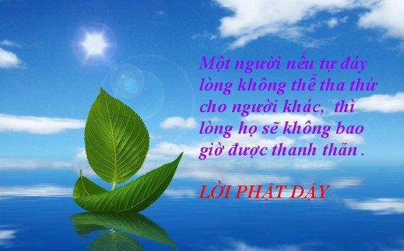 loi-phat-day-ve-cuoc-song